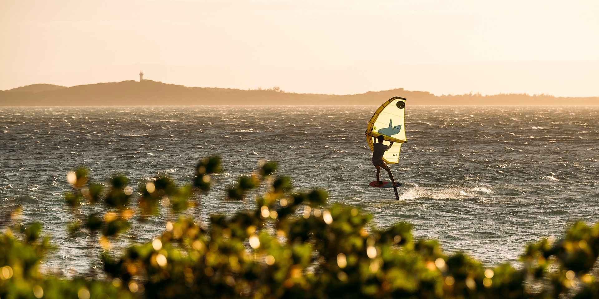 Wing Surf 11
